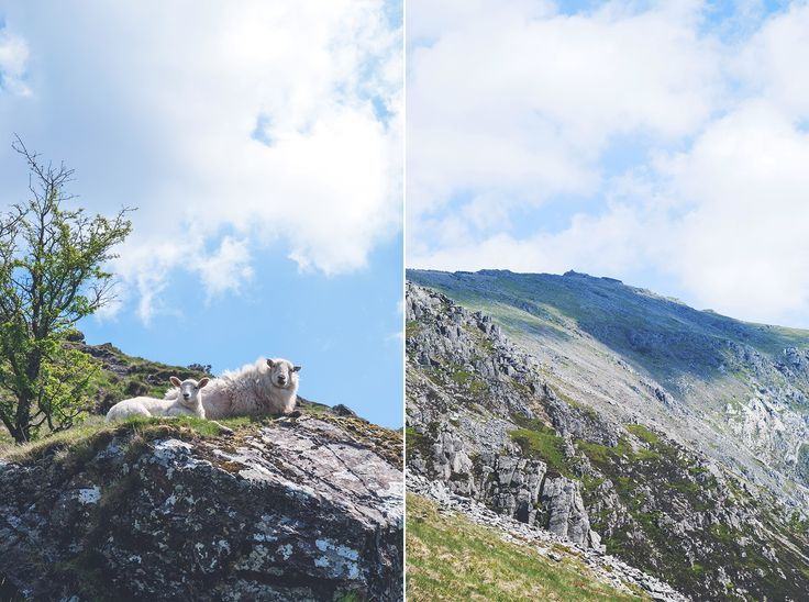 Snowdonia Park Narodowy
