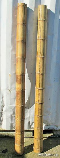 Bambustock 10/12 cm dia.200cm 5 pack 200cm