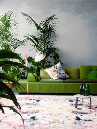 Gevoel bij uitbouw 'urban jungle'-stijl   Urban Emerald Jungle