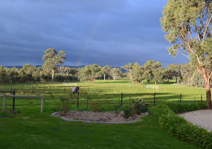 Quality horse fence with 40mm wide tape for horses, rainbow optional! Great horse fence design for the safety of your horses - tape comes with a 25 year guarantee www.stockguard.com.au