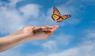 Gökhan Şekar Access Consciousness™: Avcunuda  ki Kelebek