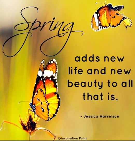17 best images about spring quotes on pinterest happy spring hello march and snow quotes - Happy spring day image quotes ...