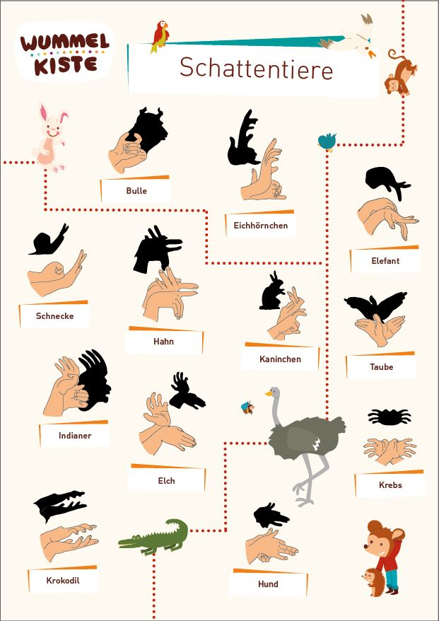 Schattentiere
