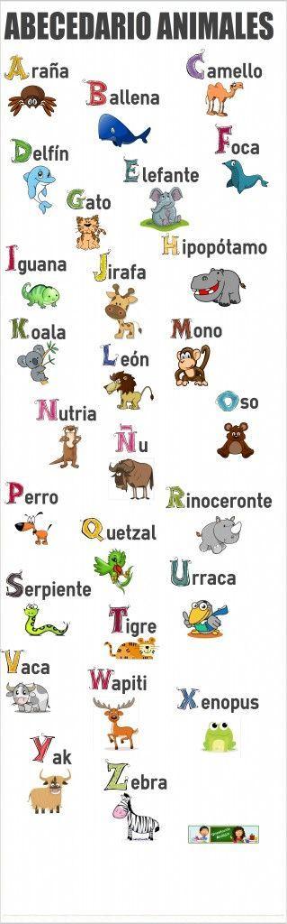 el abecedario de los animales                                                                                                                                                                                 Más