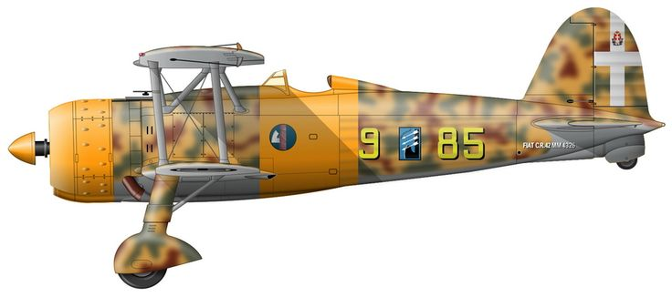 Fiat CR.42 (serial number MM4326) from the 95th Squadron of the 18th group as of winter 1940-1941.