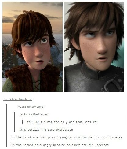 I love how DreamWorks animation gave Hiccup similar facial expressions because it shows Hiccup hasn't really changed. :)