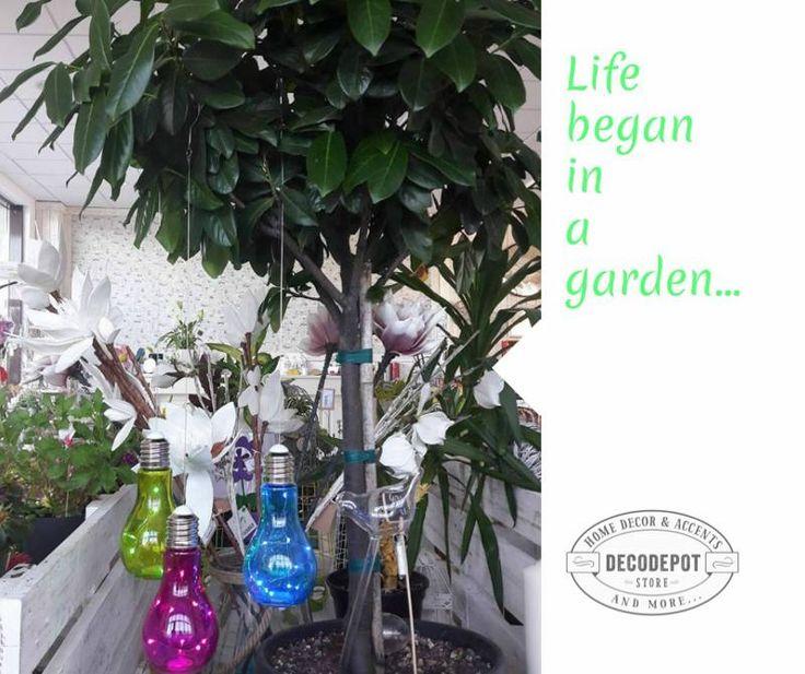 Beculeţe colorate suspendate în copaci pentru grădină. Outdoor. Lightbulb. Colored. Suspended by tree. Different colors. Garden. Decorative. Braşov.
