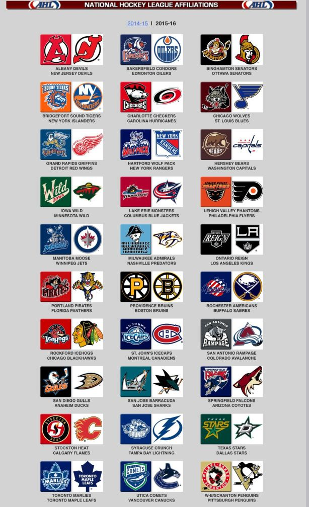 The American Hockey League Ahl Is A 30 Team Professional Ice