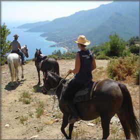 Horse riding!