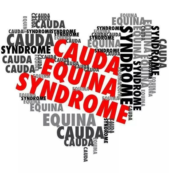 Cauda Equina Syndrome – My new Normal