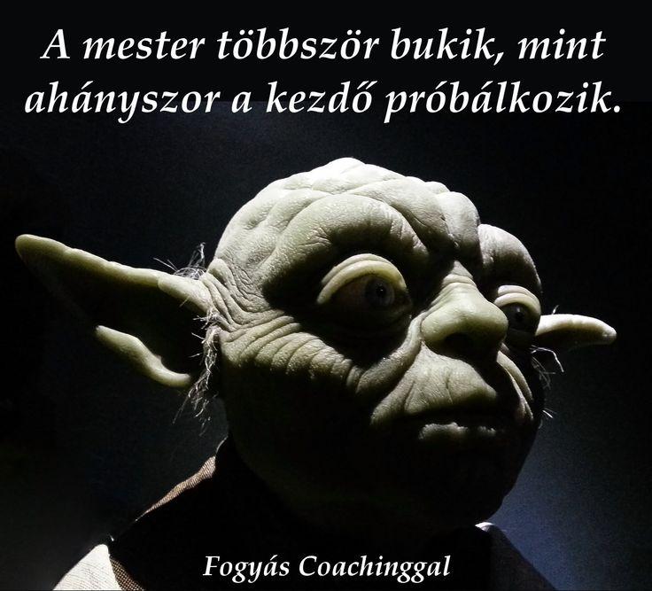 A mester többször bukik, mint ahányszor a kezdő próbálkozik.