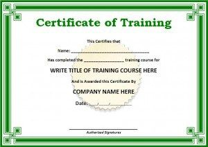 Image result for sample certificate