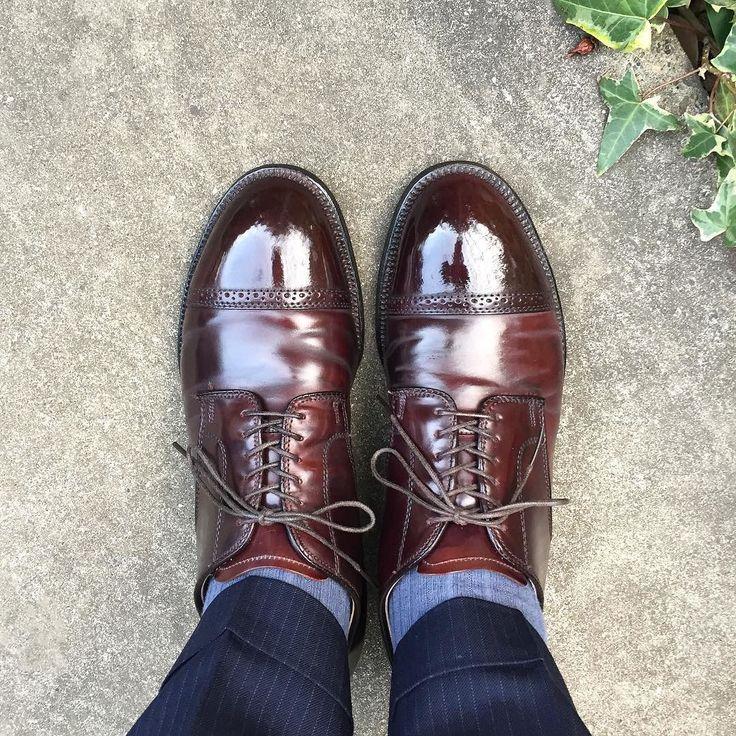 Alden @studio.cbr さんで購入した中古靴一応履きおろし 皺をまっすぐ入れたい派なのでそこはちょっとなんですが何よりモディファイドラストを試すことができました 他の靴とホールド感が違って新鮮です #alden #alden56201 #56201 #modifiedlast #cordovan #shoes #mensshoes #sotd #shoesoftheday #オールデン #モディファイドラスト #コードバン #紳士靴 #革靴
