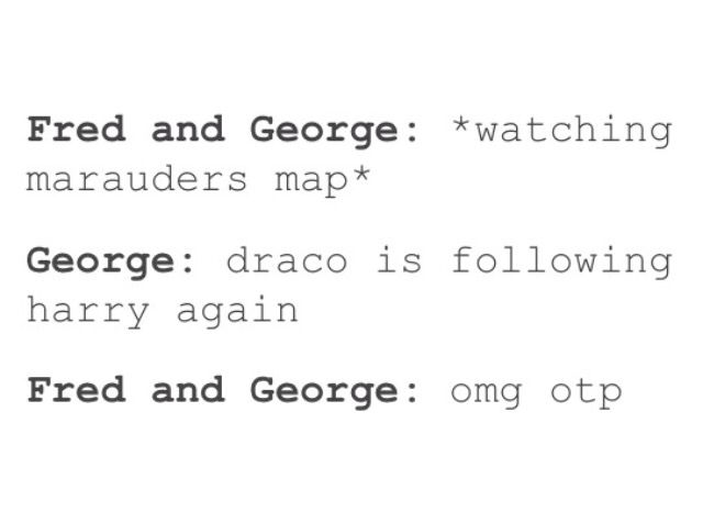 Not sure how I feel about Drarry, but I feel that it is canon that Fred and George shipped it