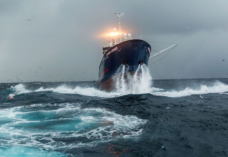 Picture of the Alaska Knight attempting to pass over a trawl caught load of mackerel