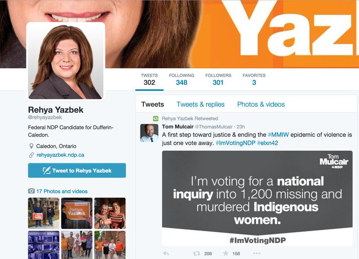 Rehya Yazbek's twitter page promoting her campaign and party promises.