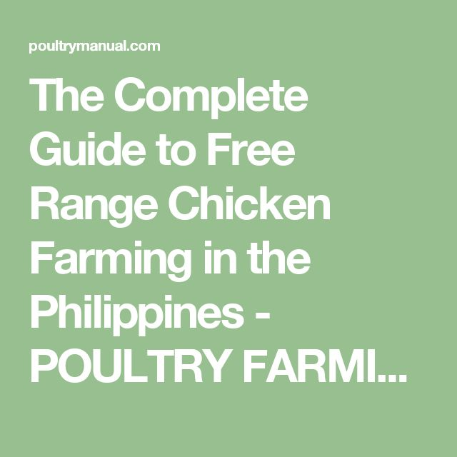 The Complete Guide to Free Range Chicken Farming in the Philippines - POULTRY FARMING MANUAL