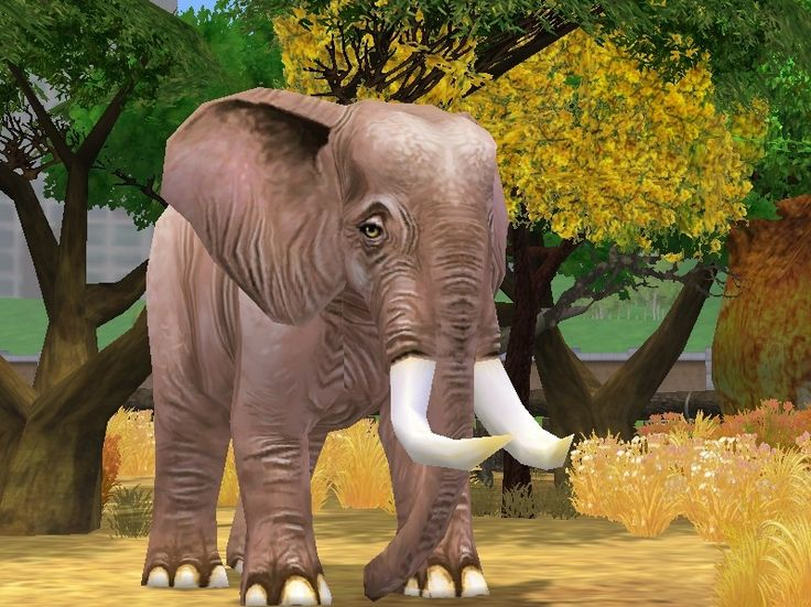 zoo tycoon 3 pc download