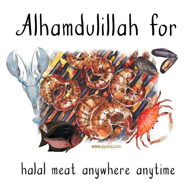 52. Alhamdulillah for halal meat anywhere anytime. #AlhamdulilahForSeries