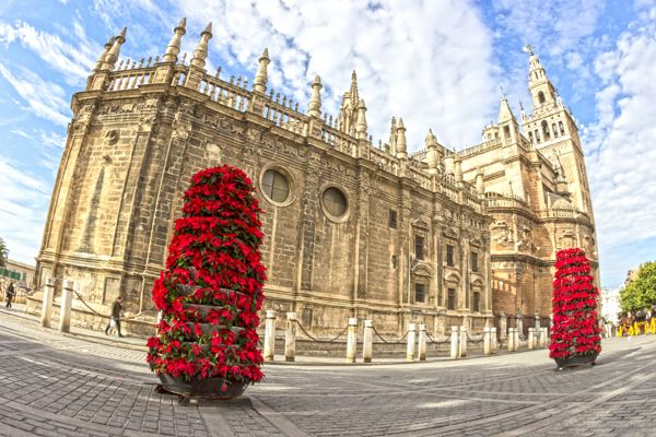 Catedral de Sevilla by Patryk Muntowski, via Behance