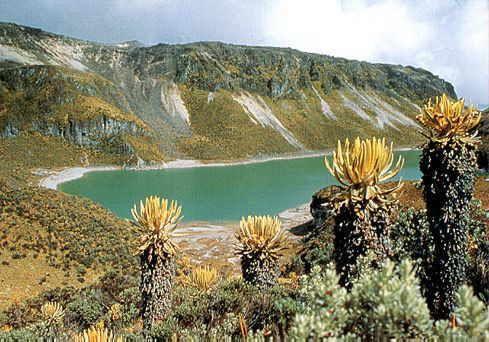 Parque Nacional de los Nevados, Caldas