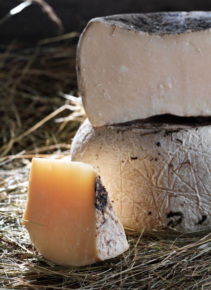 #formaggio San Patrignano. I formaggi di San Patrignano sono prodotti da latte di filiera proveniente dai nostri allevamenti, senza additivi o conservanti.