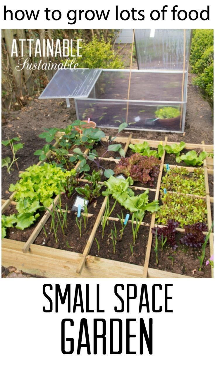 These Small Garden Ideas Will Help You Get The Most Bang For Your Vegetable  Gardening Buck