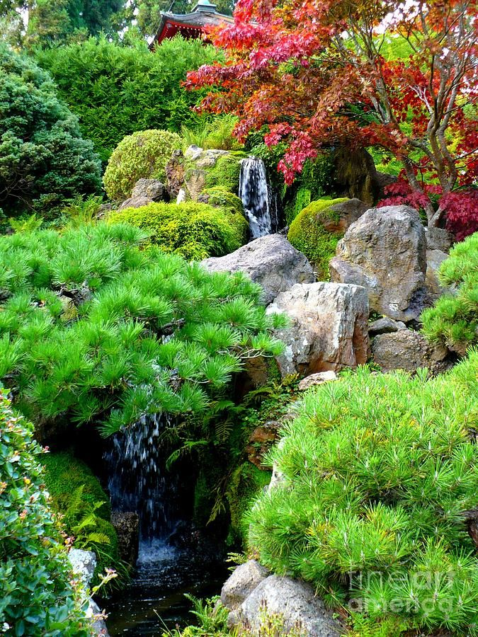 Waterfalls In Japanese Garden Photograph