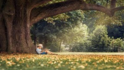 Blog für deine Verjüngung, Gesundheit, Gedankenkraft - Befreie Dich jetzt!