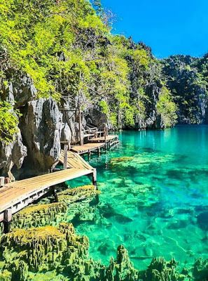 Barracuda Lake is one of the best attractions in Coron, Palawan. | dream travel, freedom business, quit 9-5