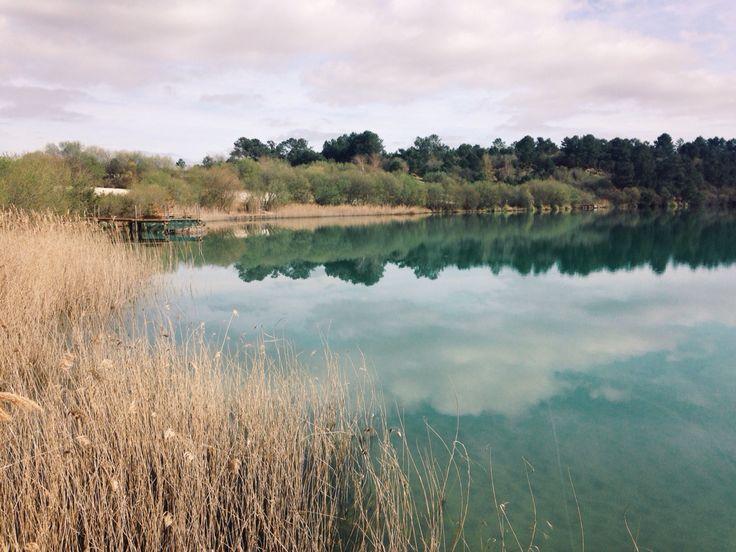 Lac d'Arjuzanx #landes #arjuzanx #morcenx #lake #nature #water
