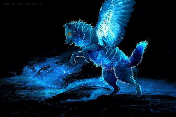 Pin by kayla on anime wolf spirit cool art wolf