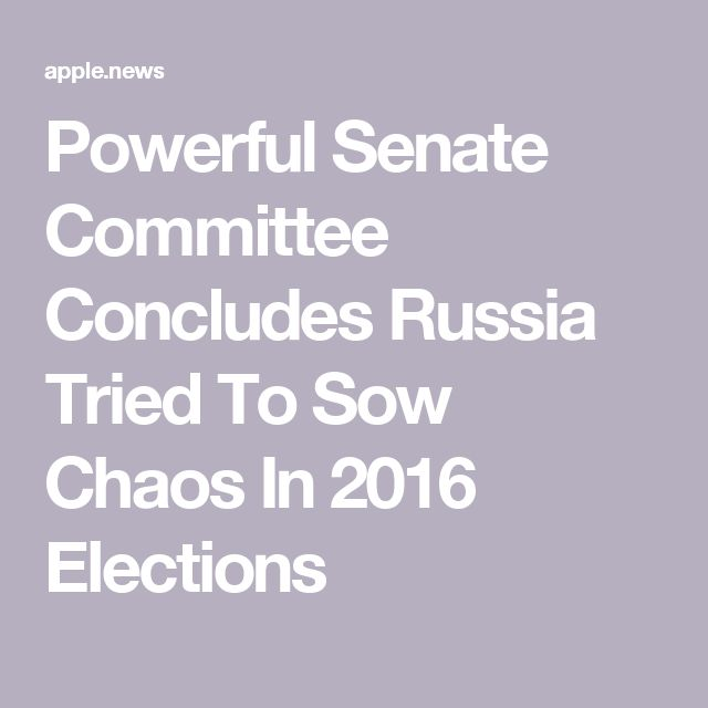 Powerful Senate Committee Concludes Russia Tried To Sow Chaos In 2016 Elections