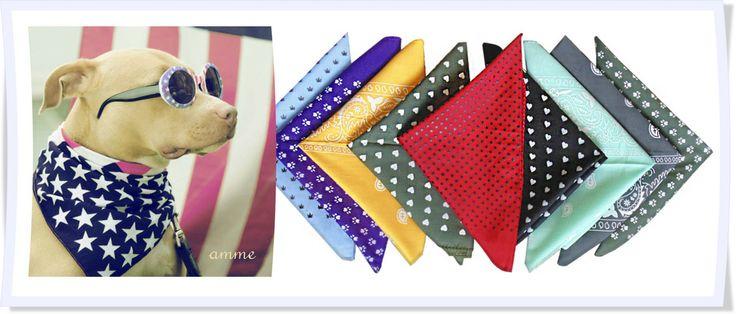 Pañoletas para perros !! www.amme.com.co