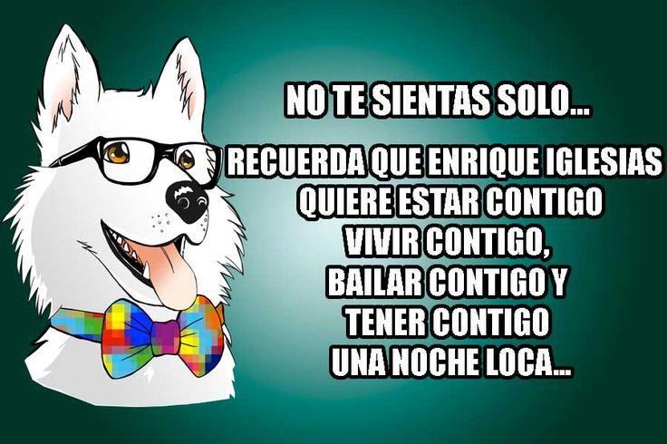 No te sientas solo, recuerda que Enrique Iglesias quiere estar contigo, vivir contigo, bailar contigo y tener contigo una noche loca. #EnrigueIglesias #Bailar #vivir #Chiste