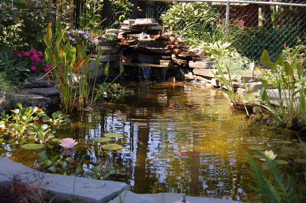 1000 images about serenity ponds on pinterest backyard for Flower garden ponds