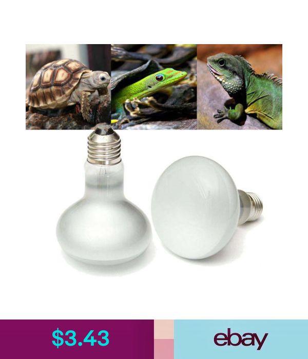 Terrarium Heat Lamps Pet Supplies Reptile Heat Lamp Light Bulb Reptiles