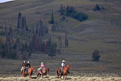 Yellowstone Trail Ride