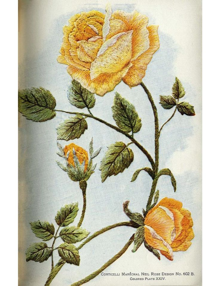 corticelli yellow rose embroidery