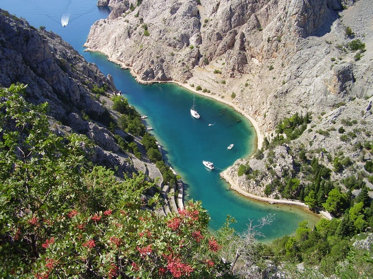 Zavratnica in Velebit Nature Park, the largest and the most complex protected area in the Republic of Croatia.