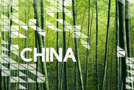 Download - Bamboo Forest in China — Stock Image #126955208