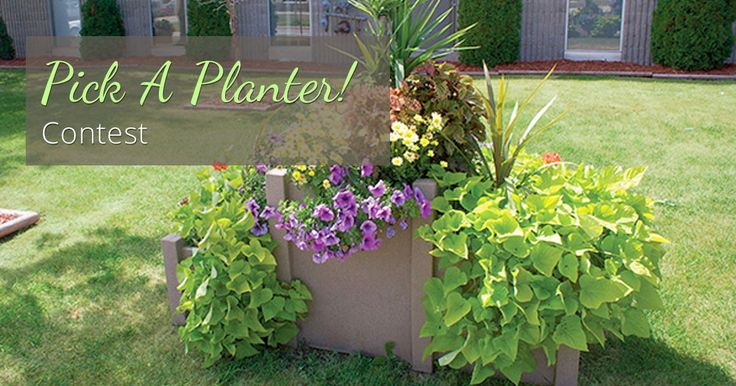 2017 Pick a Planter Contest closes Sept 30th. Enter to win $1,000 worth of Self Watering Planters!