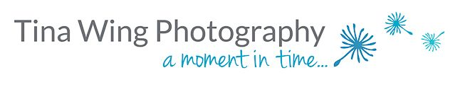 From corporate photo shoots to weddings Tina Wing Photography covers it all.