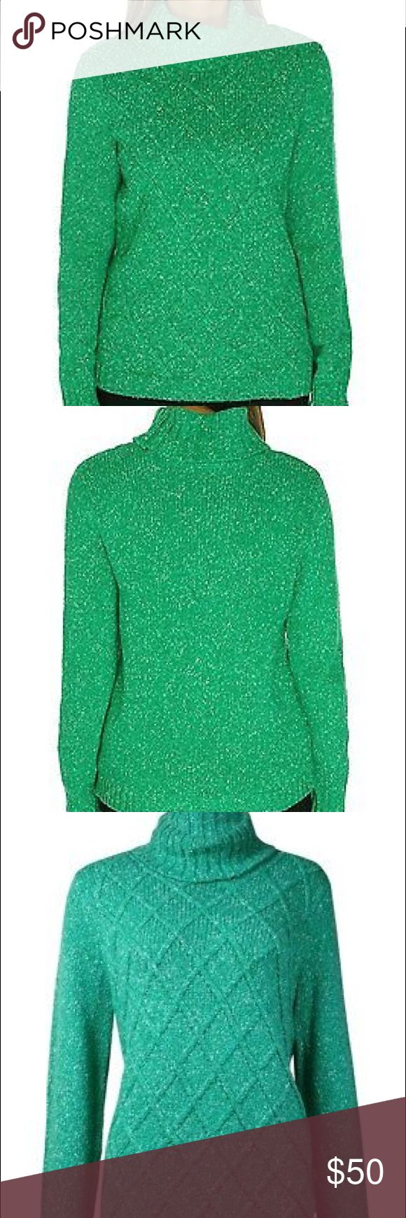 Anne Klein Green Cable Knit Sweater 61% Cotton/39% Acrylic Imported Pullover turtleneck sweater featuring cable-knit front, Rib-knit collar and cuffs, speckled green with a gorgeous woven pattern, very nice weight for this winter season! Size large & NWT! Anne Klein Sweaters Cowl & Turtlenecks