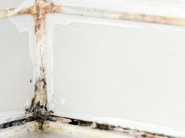 Learn how to remove black mold to improve your indoor air quality. This looks gross.
