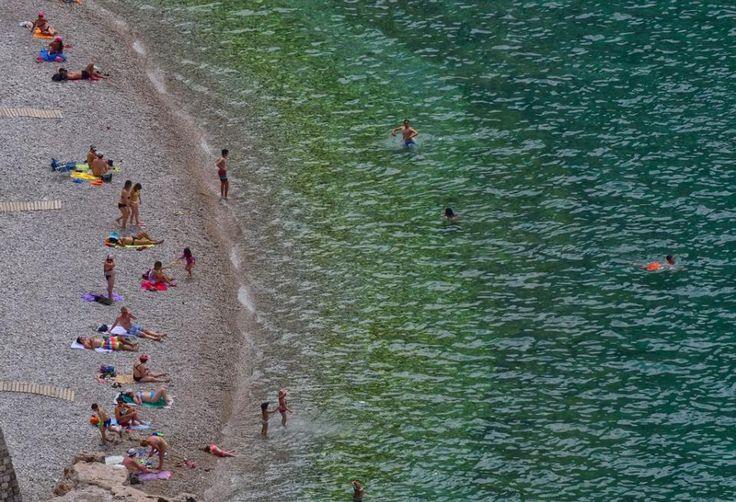 Στις παραλίες της Αχαΐας τουλάχιστον ένα είναι βέβαιο, ότι δε θα πλήξετε, είτε πάτε δυτικά στα νερά του Ιόνιου Πελάγους, είτε ανατολικά στον Πατραϊκό και Κορινθιακό Κόλπο. Παραλίες με αμμουδιά, βότσαλο, αμμοβότσαλο, βραχώδεις στις σκιές των βουνών και λόφων, παραλίες με όρμους, απόμερες - κοσμοπολίτικες, γραφικές, ήρεμες, ατίθασες. Για όλα τα γούστα. Και δίπλα στη θάλασσα, εκεί που σκάει ...