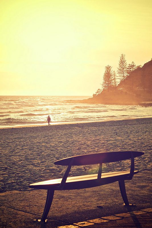 burleigh heads | gold coast | queensland...bench
