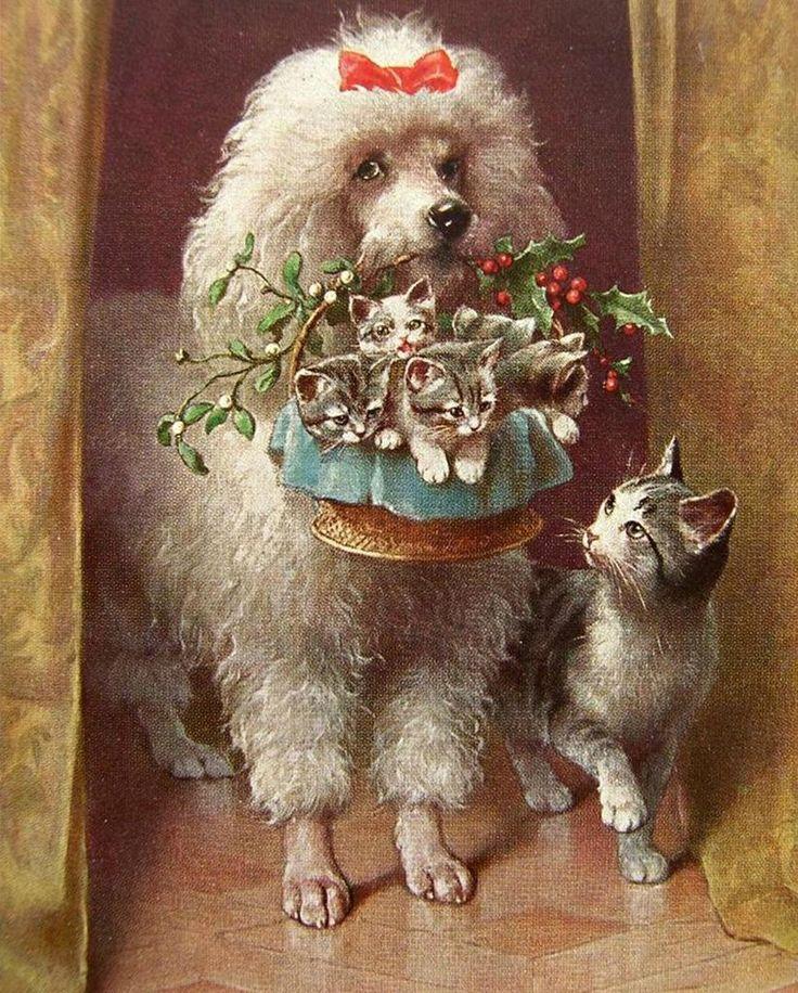 Винтажные картинки с животными, открытки днем