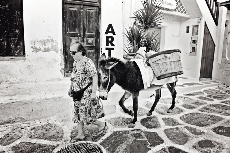 Donkey in Mykonos by Nathalie Stravers