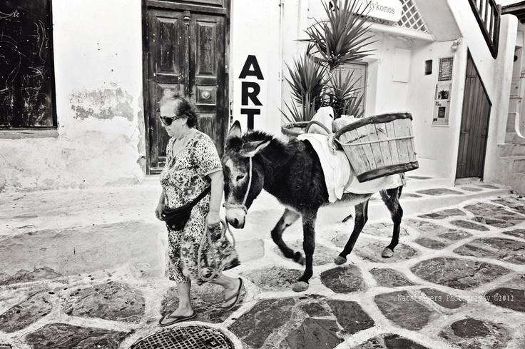 Donkey in Mykonos by Nathalie Stravers